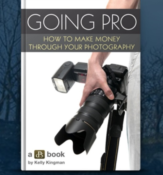 Going Pro– eBook Format