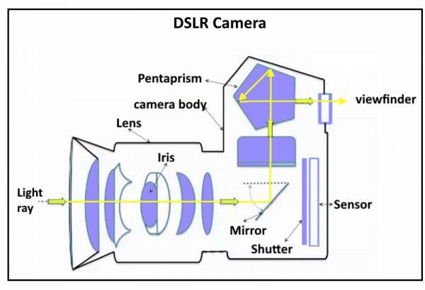 inside DSLR camera