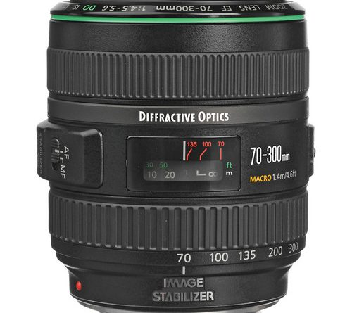Best Canon Lens For Natural Light Photography