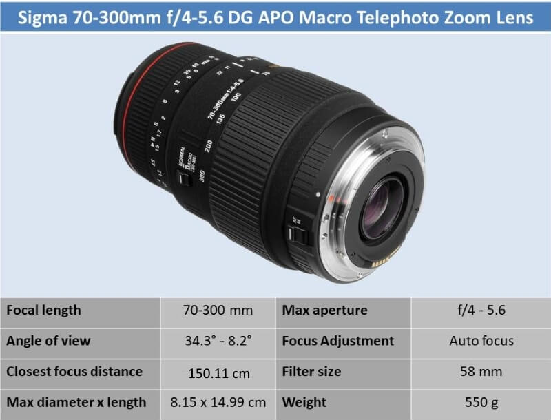 Sigma APO 70-300mm f4-5.6 DG Macro for Canon