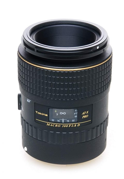 Tokina 100mm Macro Review Best Lens On Budget