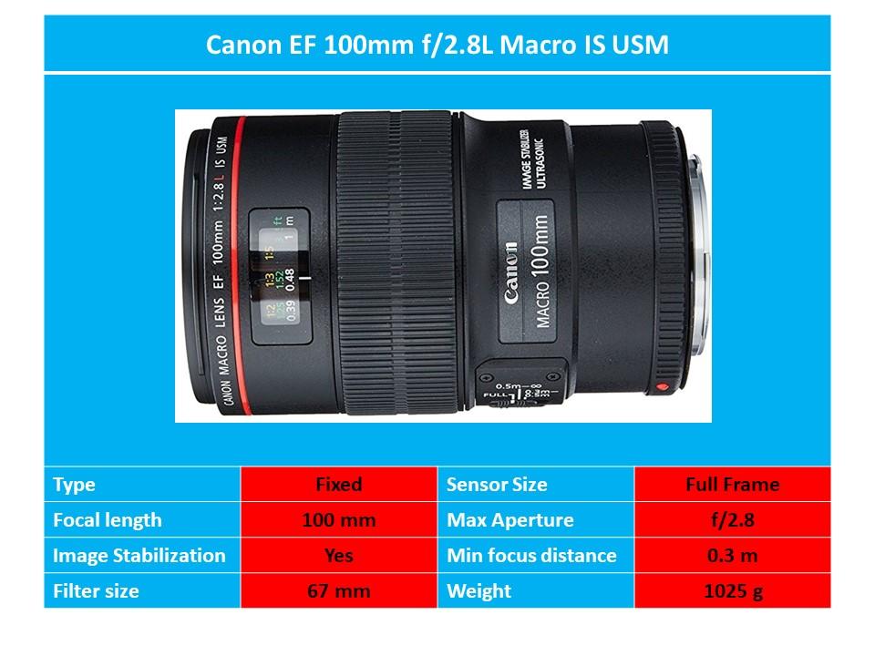 Canon EF 100mm f 2.8L II USM