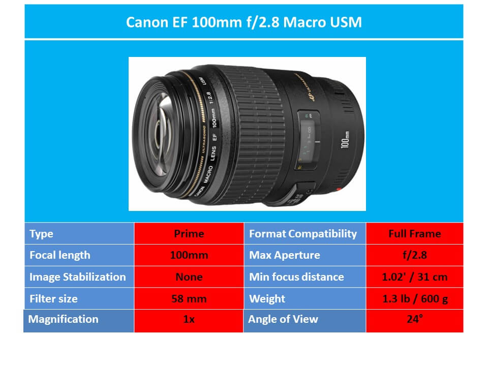 Canon EF 100 mm f/2.8 Macro USM