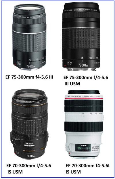 Camera Lenses Buying Guide- How to Choose the Right Lens for your Camera
