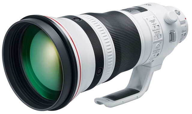 best Canon lenses for bird photography