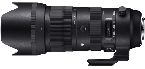 What is the Best Telephoto Lens for Nikon?